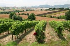 Marzos (Italia), paisaje en el verano Foto de archivo