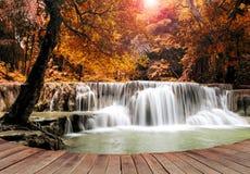 Marzyć wodny spadek na pustym drewnianym molu Zdjęcia Stock