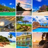 marzy o akta kolaż plaży kwitnie uroczyn obrazów piasku rozgwiazdę lata zamek z piasku seashells słońca wspaniałe sunset tropikal Fotografia Royalty Free
