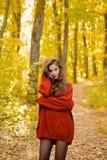 Marzycielska dziewczyna z długie włosy w dzianina pulowerze Piękna mody kobieta w jesieni czerwieni sukni z spadać opuszcza nad n obrazy royalty free