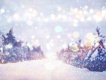 Marzycielska i abstrakcjonistyczna magiczna zima krajobrazu fotografia Obrazy Royalty Free