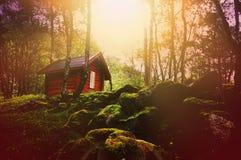 Marzycielski las przy zmierzchem z drewnianą budą Fotografia Stock