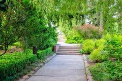 marzycielski park Fotografia Stock
