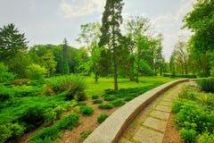 marzycielski park Obrazy Stock