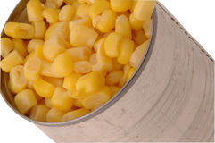 Maïs 285 Image stock
