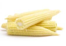 Maïs de chéri Image stock