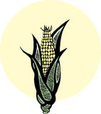 Maïs de gravure sur bois Images libres de droits