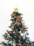 Mas-träd för ` x Arkivfoto