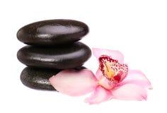 Masażu bazalta kamienie i storczykowy kwiat odizolowywający na bielu Zdjęcia Royalty Free