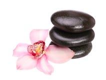 Masażu bazalta kamienie i storczykowy kwiat odizolowywający na bielu Zdjęcie Stock