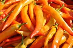 Masa chili Zdjęcie Stock