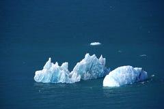 Masa de hielo flotante de hielo Foto de archivo