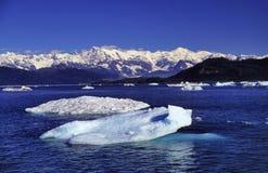 Masa de hielo flotante de hielo Fotografía de archivo