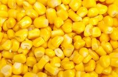 Masa kukurydzane adra Zdjęcie Royalty Free