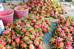 Masa smok owoc na podłoga przygotowywa dla sprzedaży w świeżym rynku Zdjęcie Stock