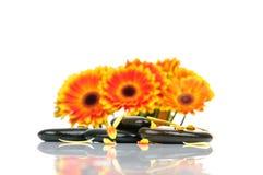 masażu zdroju kamienie Fotografia Stock