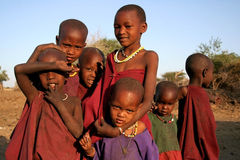 The Masaai Children. A bunch of young Masaai children from a boma in the North of Tanzania pose to the Camera. Taken at: Oldukai, Tanzania, Africa, 2009 Royalty Free Stock Photography