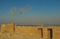 Masada堡垒在以色列 免版税库存照片