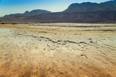 Masada in Israel Stock Photography
