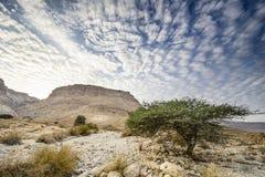 Masada, Israël Stock Afbeelding