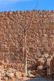 Masada. Ruins of Masada fortress, Israel Stock Images