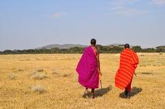 masai Zdjęcie Stock