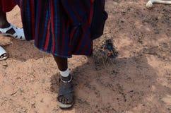 masai Imágenes de archivo libres de regalías