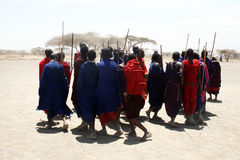 The masai dance Royalty Free Stock Photography