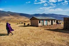 masai di camminata ed alloggi in montagne della Tanzania degli altopiani del cratere Fotografia Stock