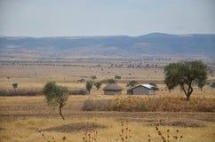 Masai-Dorf 4 Stockbild