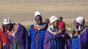 Masai-Dorf tanzania Lizenzfreie Stockfotos