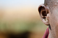 Masai ear. Ear with the hole, traditional masai Royalty Free Stock Image