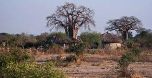 Masai-Hütten Stockbild