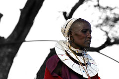 Masai Lady Stock Photos