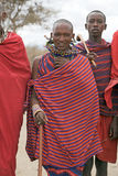 Masai man Royalty Free Stock Image