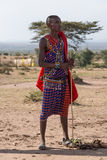 Masai man in traditional dress holding stick stock photography