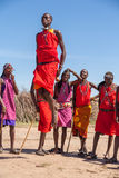 MASAI MARA, КЕНИЯ, АФРИКА 12-ОЕ ФЕВРАЛЯ: Ратники Masai Стоковое фото RF