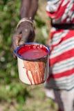 Masai Mara, Кения, Африка - 12-ое февраля 2010 Стоковые Изображения RF