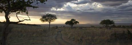 Masai mara. Beautiful sunset over Kenyan natural reserve Masai mara Stock Photos