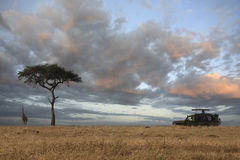 Masai mara Stock Photography