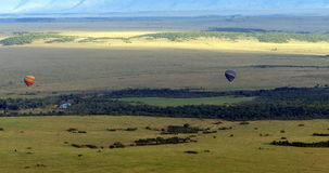 Masai Mara do voo do balão Imagens de Stock Royalty Free