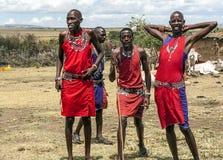 Masai Mara jumping Stock Image