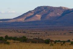 Masai Mara, Kenya Stock Photos