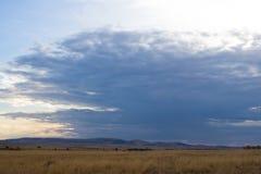 Masai Mara, Kenya Royalty Free Stock Photos