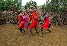 MASAI MARA, KENYA - 13 de agosto: Guerreiros do Masai que dançam o traditiona Imagens de Stock Royalty Free