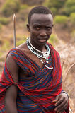 Masai-Mara-Krieger Stockfoto