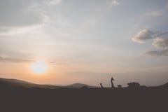 Masai Mara sunset. A beautiful sunset over the masai mara savannah Stock Photography