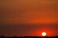 Masai mara sunset Stock Image