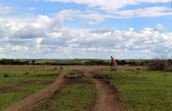 Masai mara village Royalty Free Stock Photo