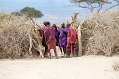 Masai men Royalty Free Stock Image